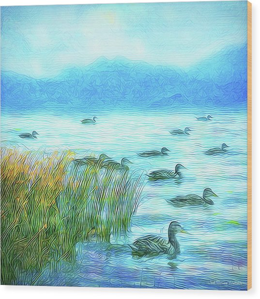 Ducks On Misty Morn - Lake In Boulder County Colorado Wood Print