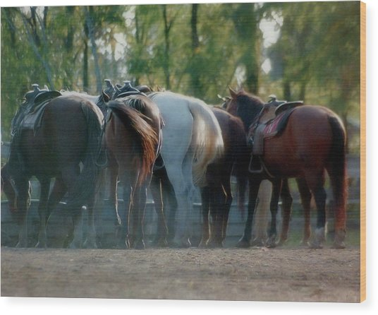 Dude Ranch Wood Print by JAMART Photography
