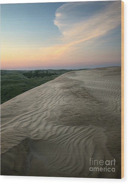 Dune Dawn Wood Print by Royce Howland