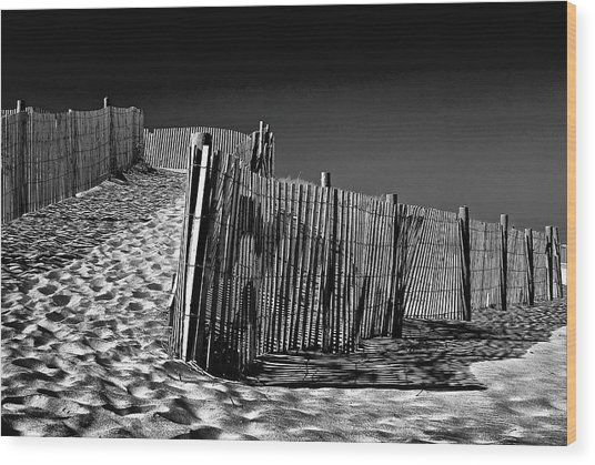 Dune Fence, Black And White Wood Print