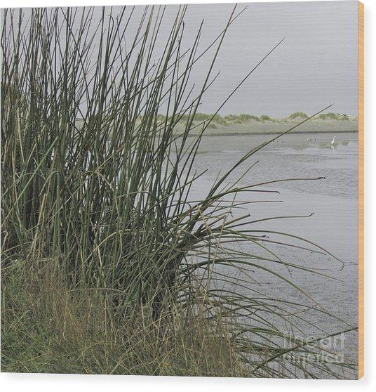 Bodega Dunes #2 Wood Print
