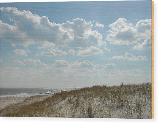 Dunes 32 Wood Print by Joyce StJames