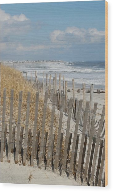 Dunes 35 Wood Print by Joyce StJames