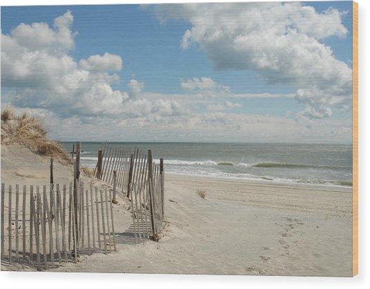 Dunes 4 Wood Print by Joyce StJames