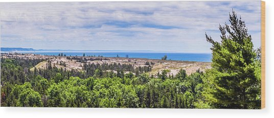 Dunes Along Lake Michigan Wood Print