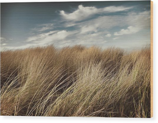 Dunes And Clouds Wood Print