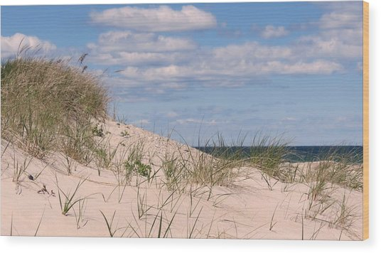 Dunes Of White Horse Beach Wood Print