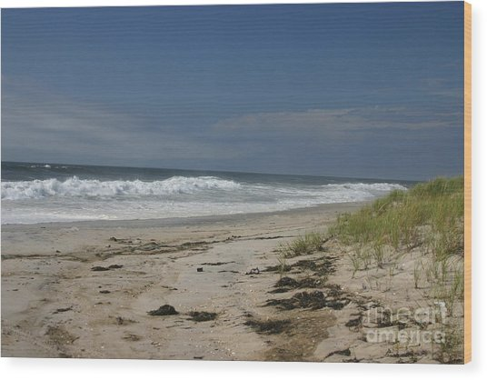 Dunes On Long Island Wood Print by Dennis Curry