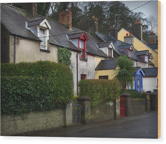 Dunmore Houses Wood Print