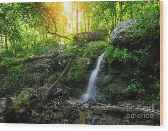 Dunnfield Creek Sunrise  Wood Print