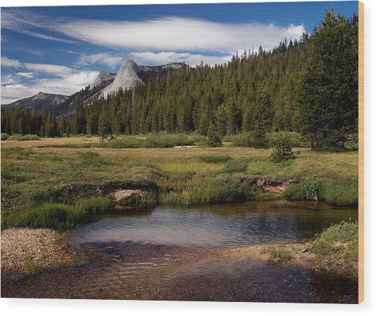 Dusy Meadow  No 10 Wood Print