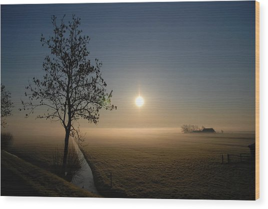 Dutch Farm At Dawn Wood Print by Hans Kool