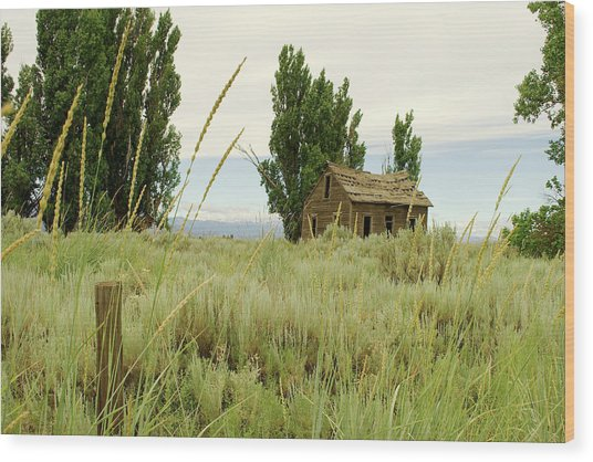 Dyer Country Home Wood Print