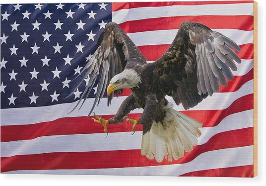 Eagle And Flag Wood Print
