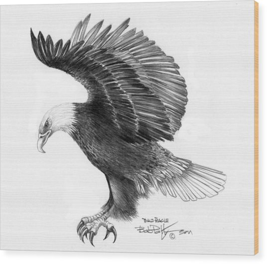 Eagle Attacking Wood Print by Bob Patterson