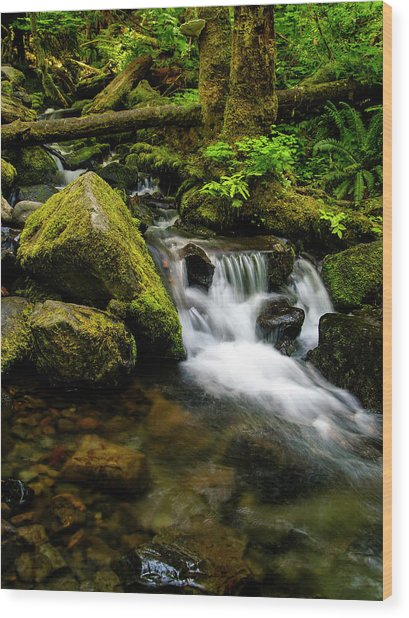 Eagle Creek Cascade Wood Print