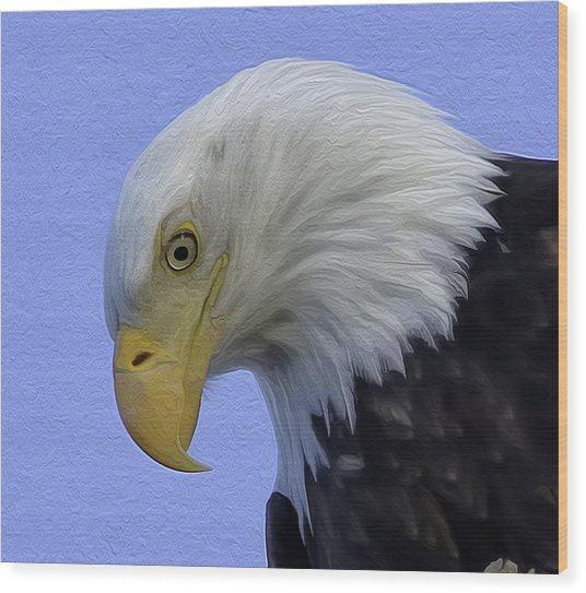 Eagle Head Paint Wood Print