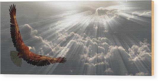 Eagle In Flight Above The Clouds Wood Print