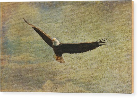 Eagle Medicine Wood Print