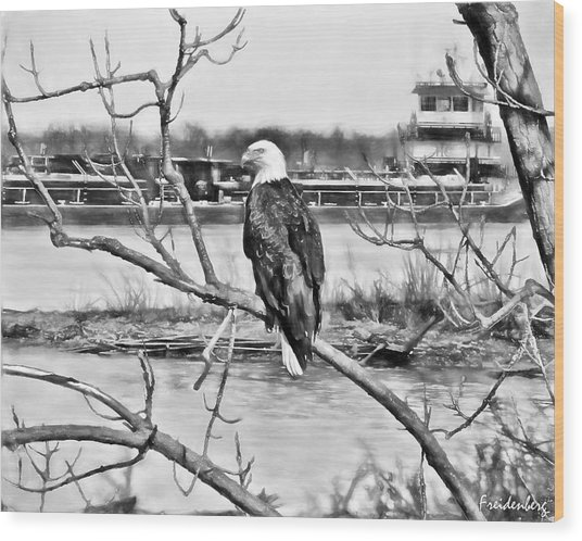 Eagle On The Illinois River Wood Print