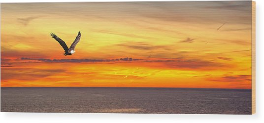 Eagle Panorama Sunset Wood Print