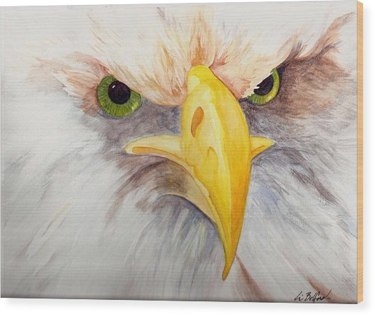 Eagle Stare Wood Print by Eric Belford