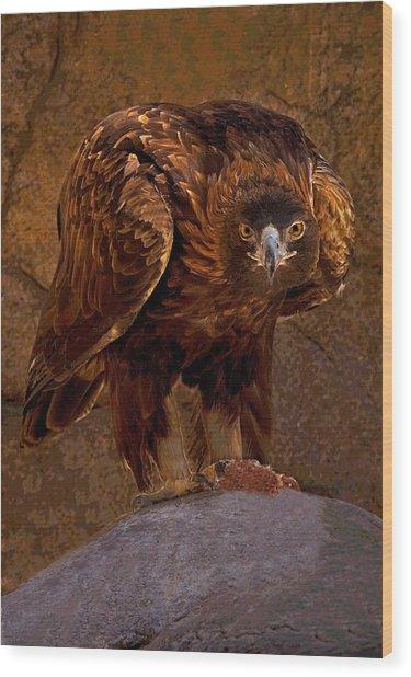 Eagle's Stare Wood Print