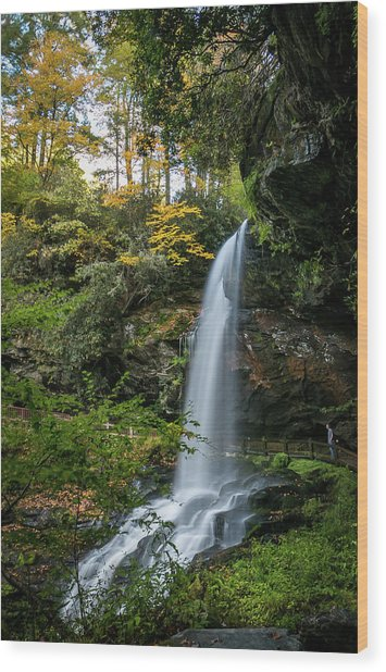 Early Autumn At Dry Falls Wood Print