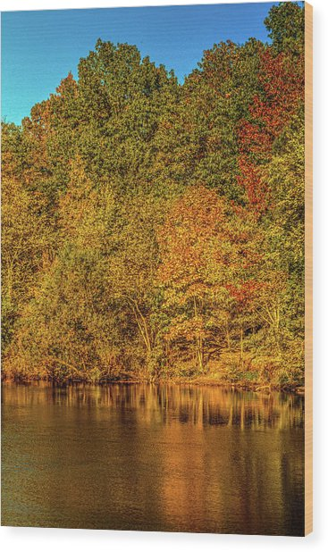 Early Autumn Wood Print by Barry Jones