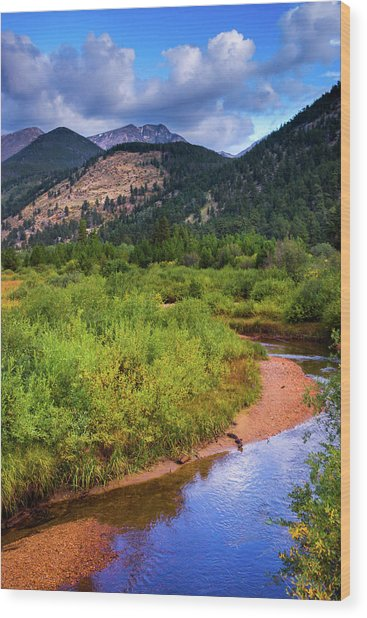 Wood Print featuring the photograph Early Autumn In Colorado by John De Bord