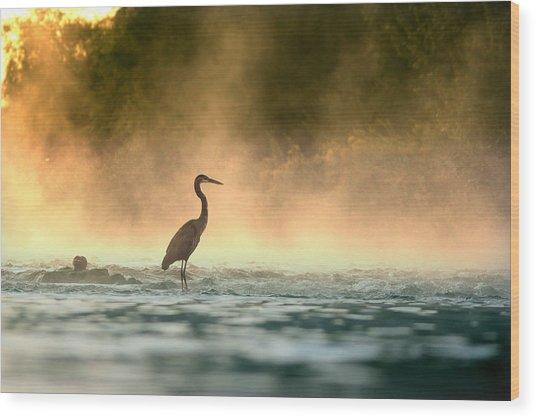 Early Bird Wood Print