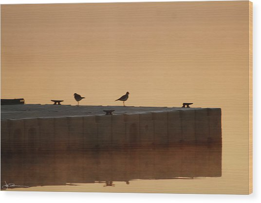 Early Birds Wood Print