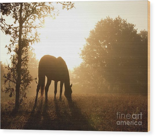 Early Fall Morning Wood Print