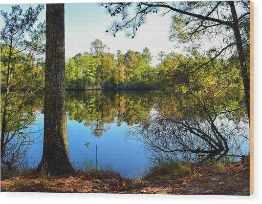 Early Fall Reflections Wood Print