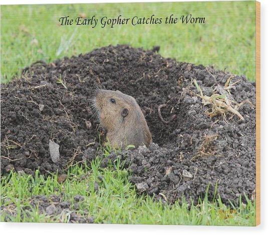 Early Gopher Catches The Worm Wood Print