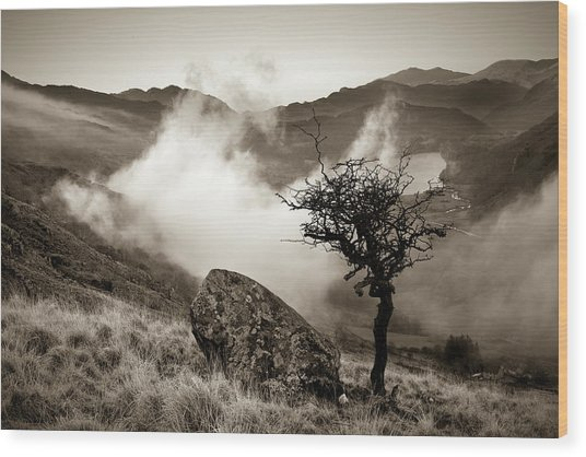 Early Mist, Nant Gwynant Wood Print