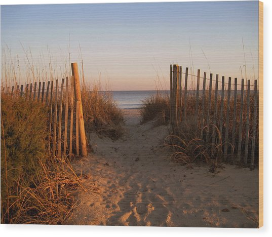 Early Morning At Myrtle Beach Sc Wood Print