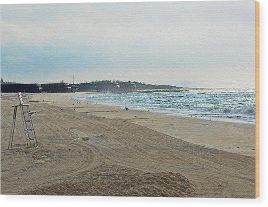 Early Morning Beach Silver Gull Club Wood Print