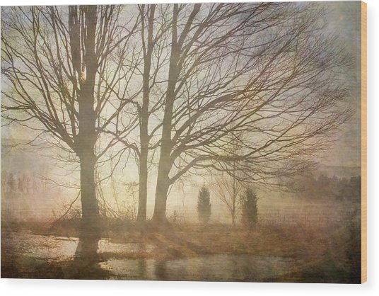 Early Morning Fog Wood Print