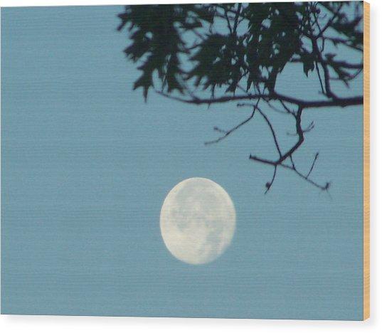 Early Morning Moon Wood Print