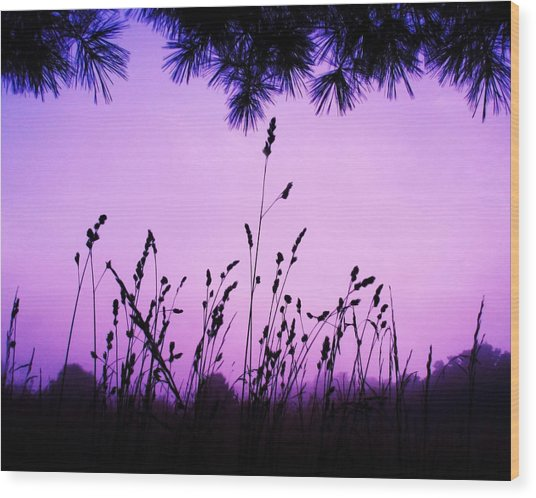 Early Morning Rise Wood Print