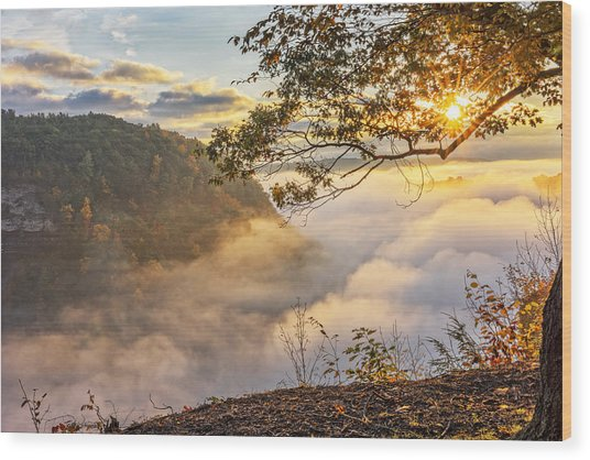Early Morning Sunrise At Letchworth State Par Wood Print