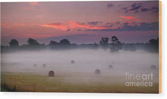 Wood Print featuring the photograph Early Morning Sunrise On The Natchez Trace Parkway In Mississippi by T Lowry Wilson