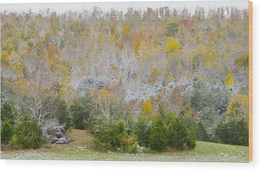 Early Snow Fall Wood Print