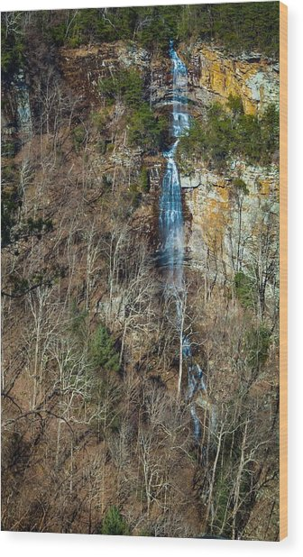 Early  Spring Waterfall  Wood Print