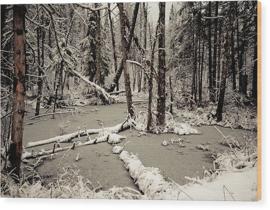 Early Winter Wood Print by Todd Bissonette