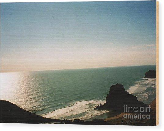 East Coastline In New Zealand Wood Print