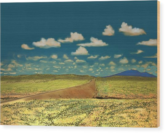 East Of Flagstaff Arizona Wood Print