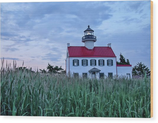 East Point At Twilight Wood Print
