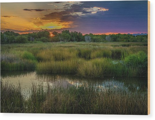 East Wetlands Sunrise Wood Print